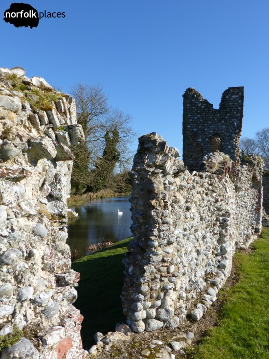 Baconsthorpe Castle. Swans in the moat