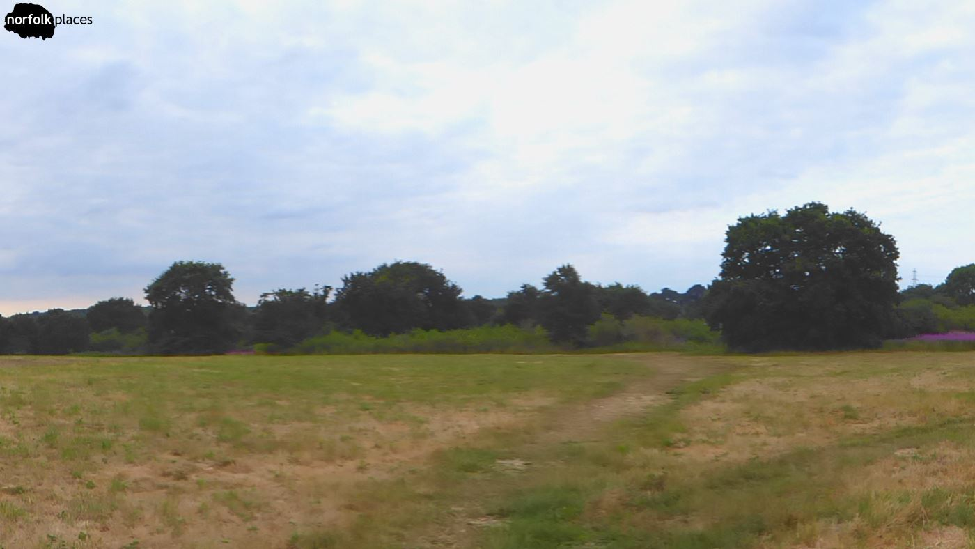 Swardeston Common, South Norfolk