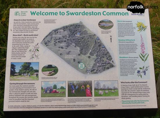 Swardeston Common
