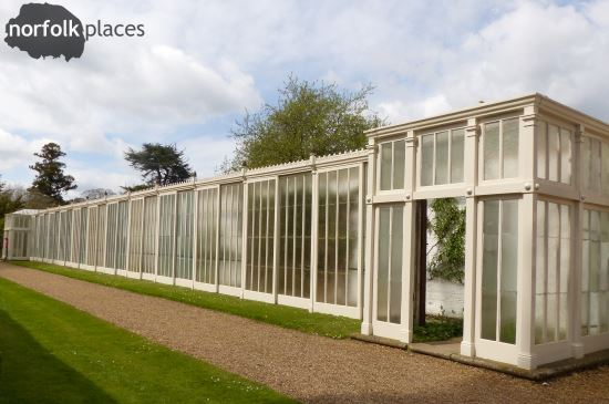 Somerleyton Hall greenhouse
