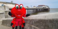 Claude the Crab to star at opening of new Cromer charity shop