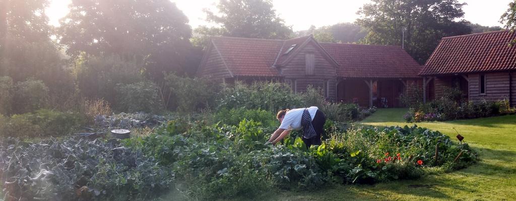 the-grove-garden