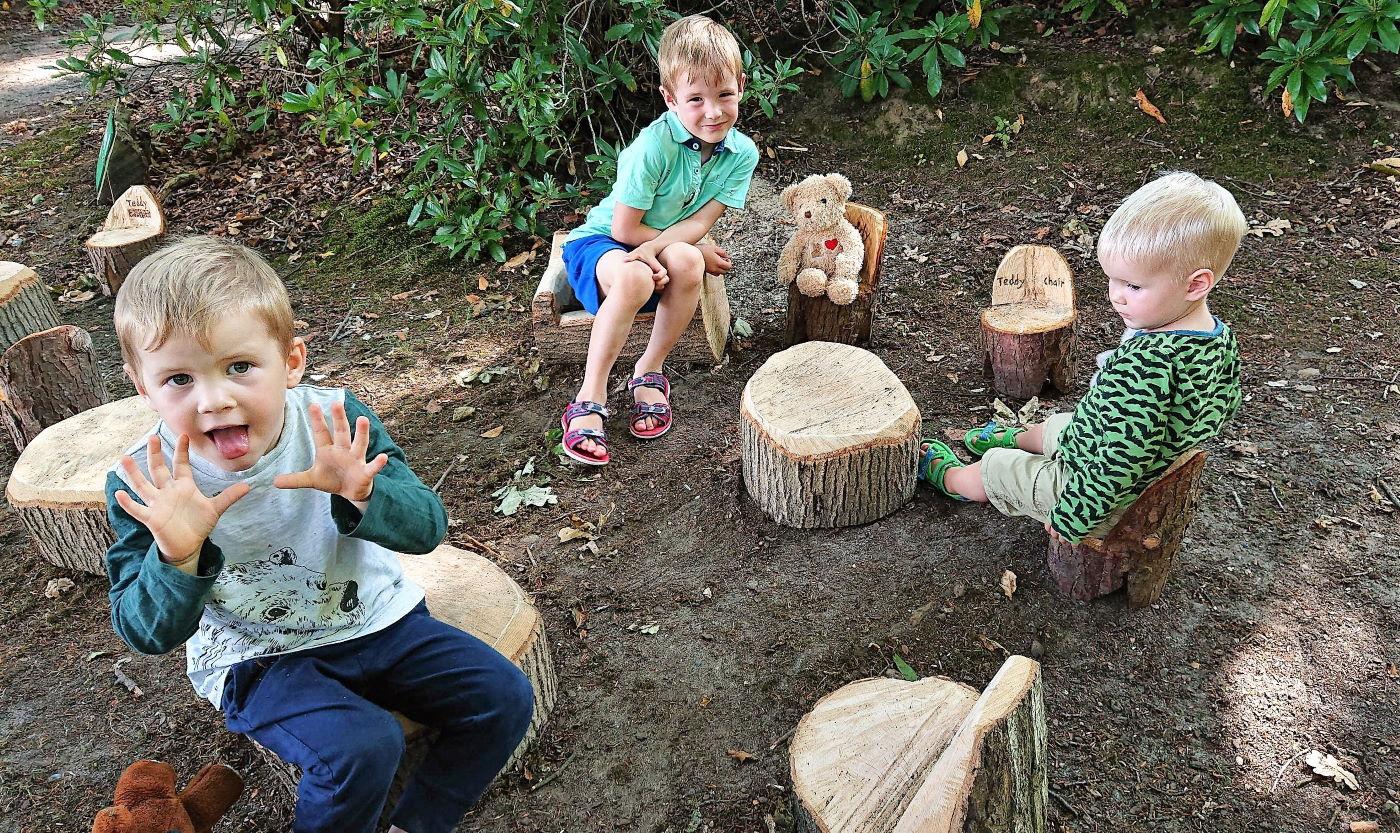 Fairhaven Garden_Teddy Bears Picnic - credit Paul Dickson