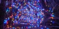 blickling-spectacular-lights