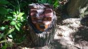 Fairhaven Bear Hunt