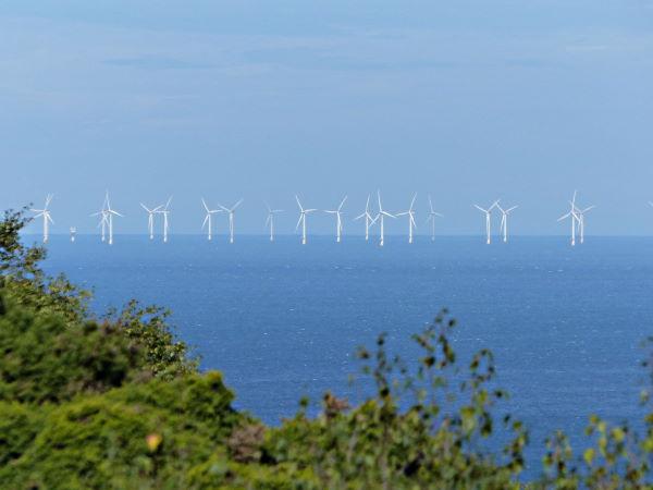 Beeston Regis walk - wind turbines