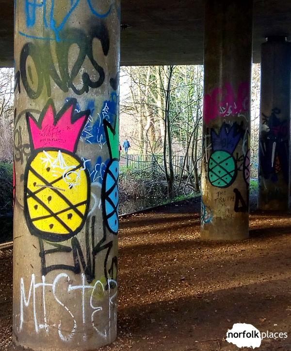 Cringelford A11 underpass graffiti