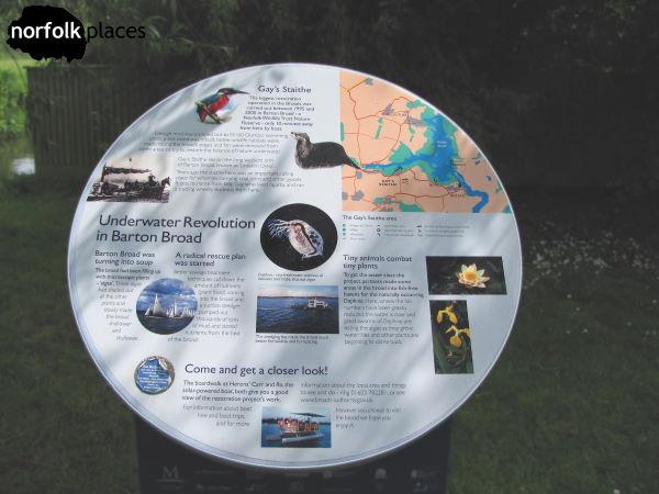Underwater revolution in Barton Broad