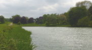 Holkham Lake Walk