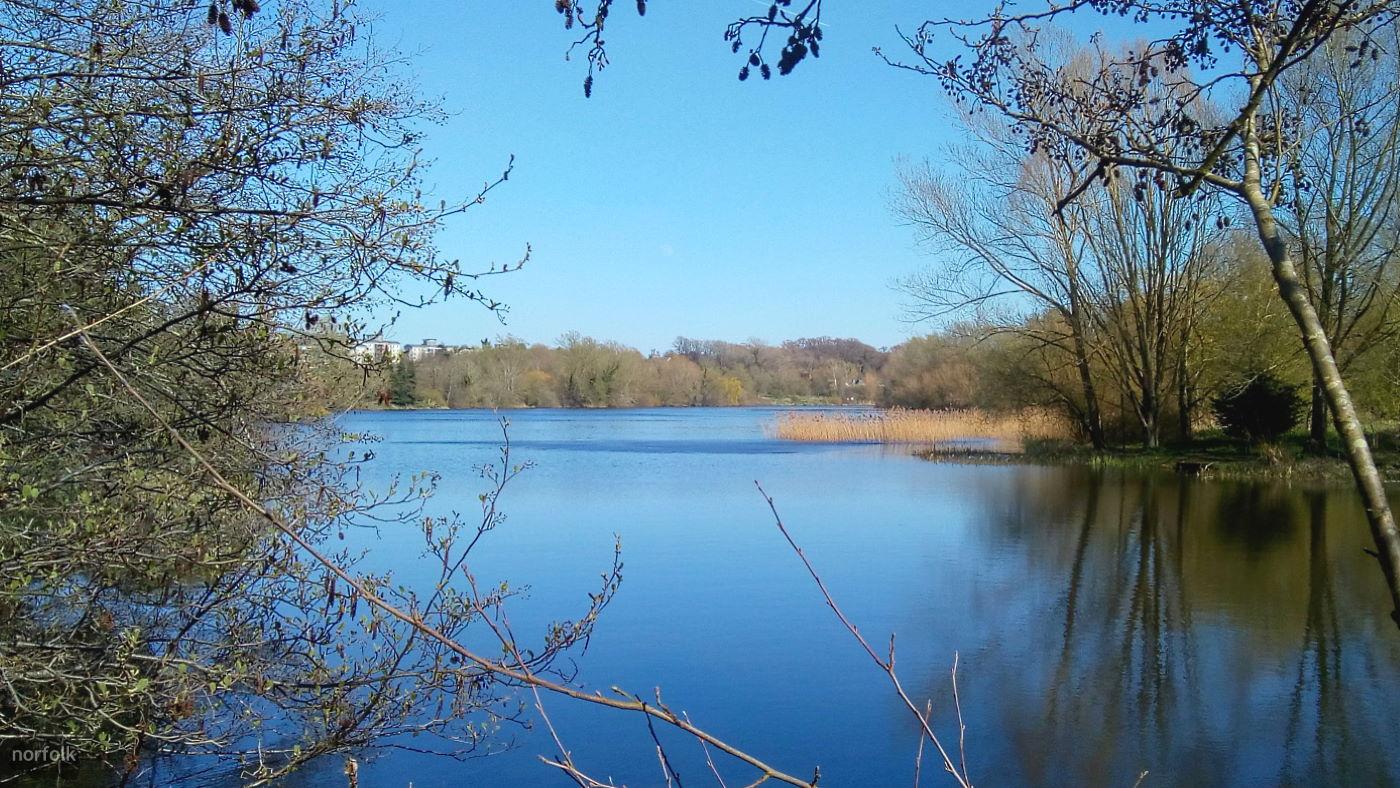 UEA Broad, River Yare and Marston Marsh Circular Walk