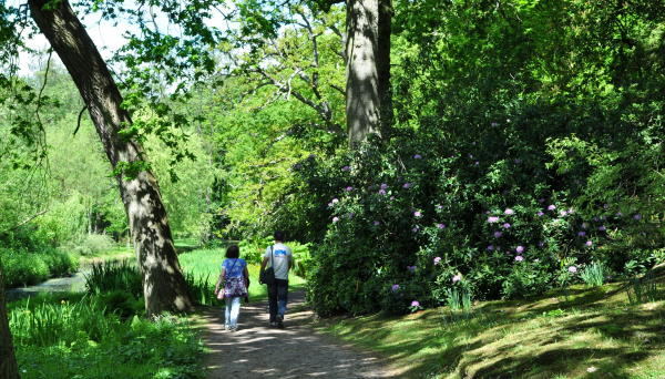 Fairhaven Woodland and Water Garden_Main Entrance Path