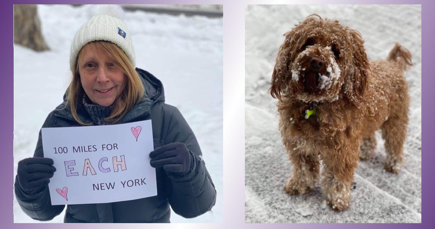Sydney Goes Walkies In New York Snow